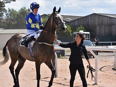 SEARCHING - Horse Racing Hub