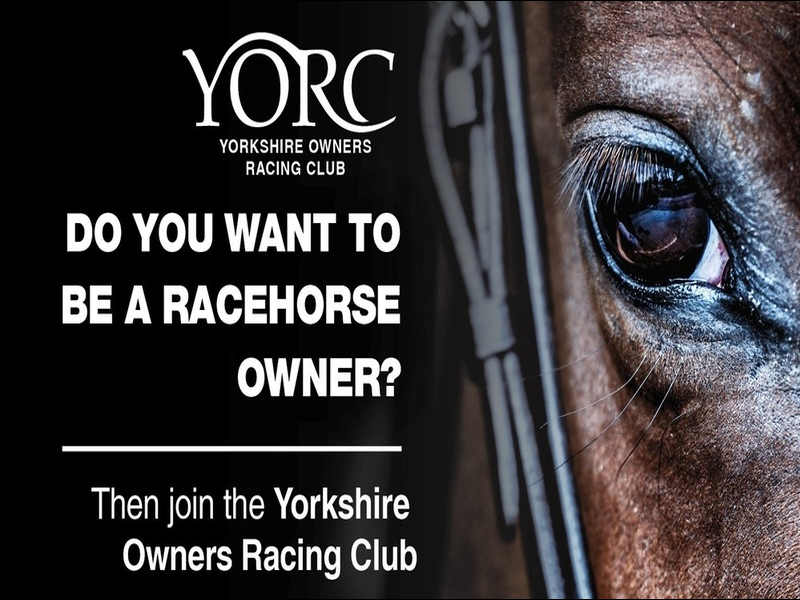 Yorkshire Owners Racing Club - Horse Racing Hub