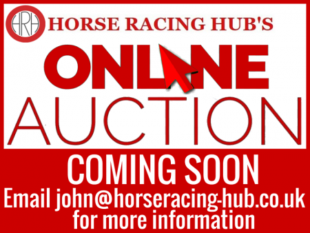 Online Auction - Horse Racing Hub