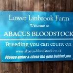 Abacus Bloodstock - Horse Racing Hub