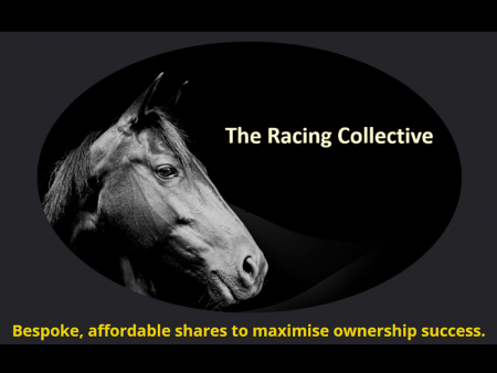 THE RACING COLLECTIVE - Horse Racing Hub