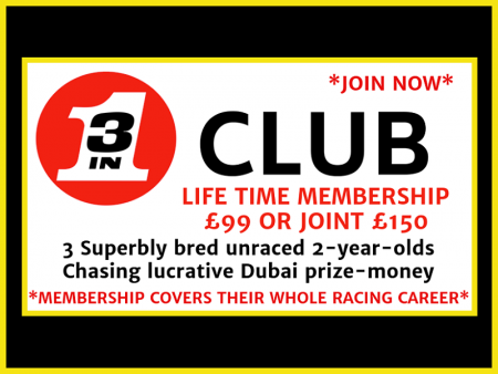 3 in 1 Club - Horse Racing Hub